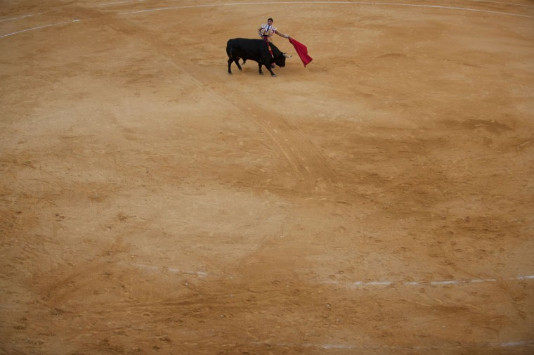 "Spanish matador Francisco Rivera Ordonez performs a pass with ""muleta"" on a bull during the Corpus bullfighting festival at the bullring of Granada on May 25, 2016. (JORGE GUERRERO/AFP/Getty Images)"