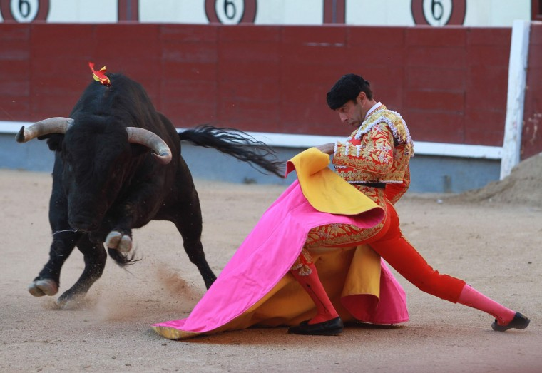 "Spanish matador Enrique Ponce performs a pass with ""capote"" to a bull during the San Isidro Feria at Las Ventas bullring in Madrid on May 19, 2016. (Alberto Simon/AFP/Getty Images)"