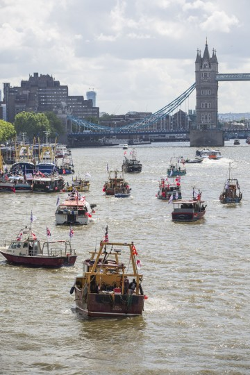 LONDON, ENGLAND - JUNE 15: Boats from the 'Fishing for Leave' campaign group join a flotilla along the Thames River on June 15, 2016 in London, England. The flotilla organised by members of the Fishing for Leave group, who are campaigning to leave the European Union ahead of the referendum on the 23rd of June, was countered by boats representing the 'In' campaign. (Photo by Jack Taylor/Getty Images)