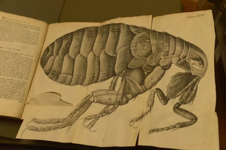 """This is really where science kind of takes shape as we understand it – not based on tradition or books or superstition – this is science based on actual direct observation,"" Espinosa says of Micrographia, a book by Robert Hooke is a 1665 that includes drawings of insects viewed through a microscope. The book includes directions for readers to make their own microscope. The names written on the first page of the book reveal Chapin A Harris, the first dean of the University of Maryland's Dental School, owned the book in 1859. (Christina Tkacik/Baltimore Sun)"