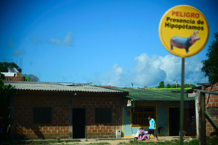 Picture of a sign warning about the presence of hippos in Doradal, Antioquia department, Colombia, near the Hacienda Napoles theme park, once the private zoo of drug kingpin Pablo Escobar at his Napoles ranch, taken on June 22, 2016. (RAUL ARBOLEDA/AFP/Getty Images)