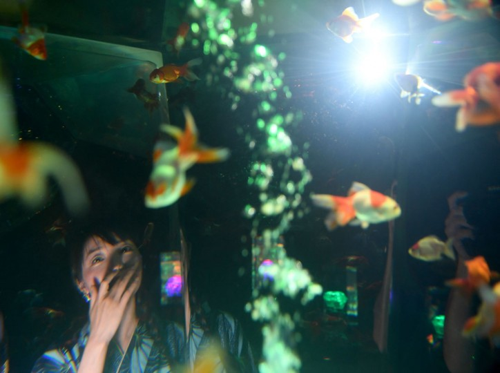 A woman is seen through a tank as she watches goldfish during a press preview of the 2016 EDO Nihonbashi Art Aquarium exhibition in Tokyo on July 7, 2016. (TOSHIFUMI KITAMURA/AFP/Getty Images)