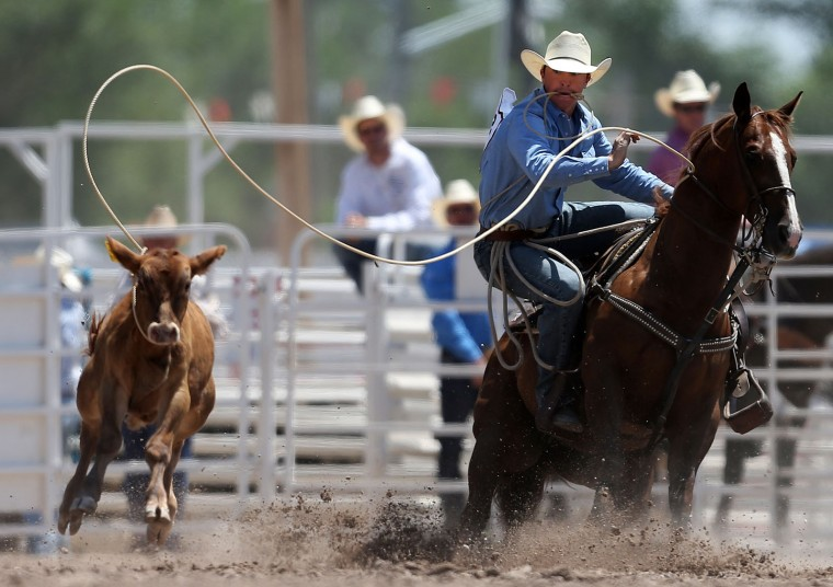Jordan Ketscher ropes his calf in the tie-down roping event during the fifth day of the 120th annual Cheyenne Frontier Days Rodeo on Wednesday, July 27, 2016, at Frontier Park Arena in Cheyenne, Wyo. (Blaine McCartney/The Wyoming Tribune Eagle via AP)