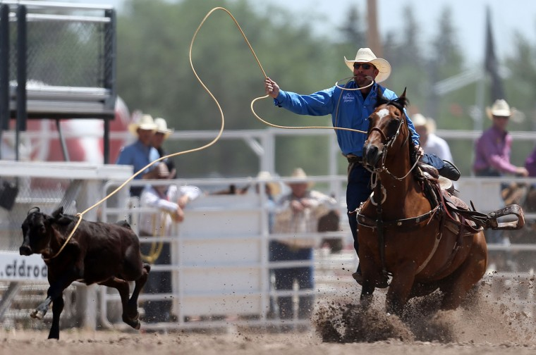 In this Wednesday, July 27, 2016 photo, Reese Riemer of Stinnett, Texas, competes in the tie-down roping event during the fifth day of the 120th annual Cheyenne Frontier Days Rodeo at Frontier Park Arena in Cheyenne, Wyo. (Blaine McCartney/The Wyoming Tribune Eagle via AP)