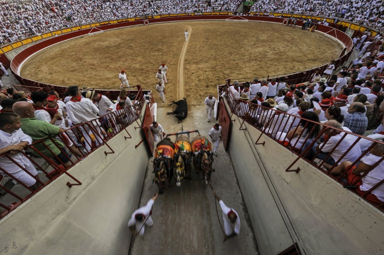 The body of a bull is pulled outside of the bull ring during a horseback bullfight at San Fermin Fiestas, in Pamplona, northern Spain, Wednesday, July 6, 2016. People from around the world kick off the festival with a messy party in the Pamplona town square, one day before the first of eight days of the running of the bulls. (AP Photo/Alvaro Barrientos)