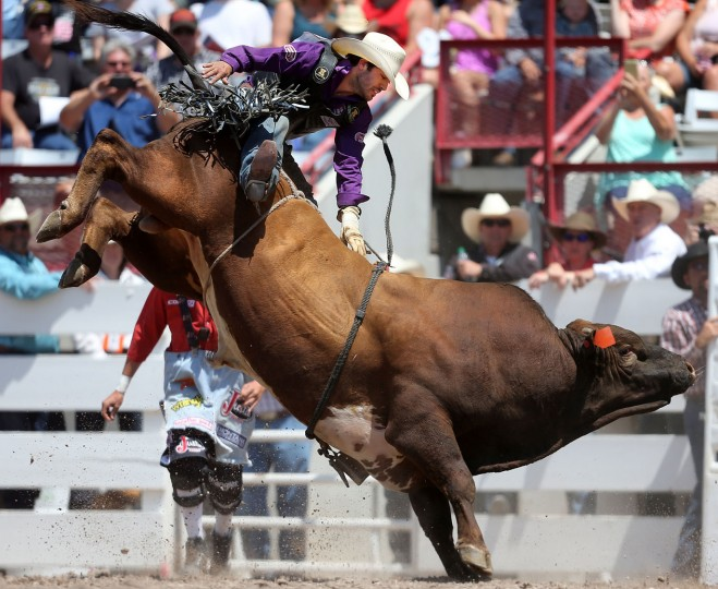 Tim Bingham of Honeyville, Utah, competes in the bull riding event during the fifth day of the 120th annual Cheyenne Frontier Days Rodeo Wednesday afternoon, July 27, 2016, at Frontier Park Arena in Cheyenne, Wyo. (Blaine McCartney/Wyoming Tribune Eagle via AP)