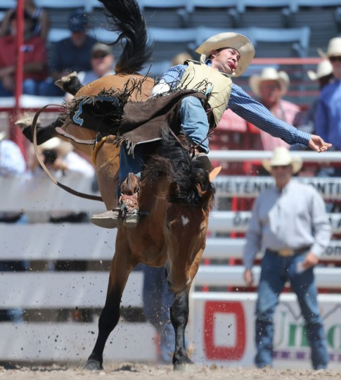 Joel Schlegel of Burns, Colo., competes in the bareback event during the fifth day of the 120th annual Cheyenne Frontier Days Rodeo Wednesday afternoon, July 27, 2016, at Frontier Park Arena in Cheyenne, Wyo. (Blaine McCartney/Wyoming Tribune Eagle via AP)
