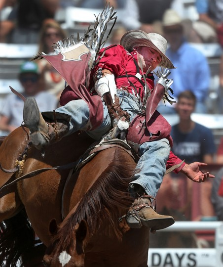 Mike Solberg of Sunnyrook, AB, competes in the bareback event during the fifth day of the 120th annual Cheyenne Frontier Days Rodeo Wednesday afternoon, July 27, 2016, at Frontier Park Arena in Cheyenne, Wyo. (Blaine McCartney/Wyoming Tribune Eagle via AP)