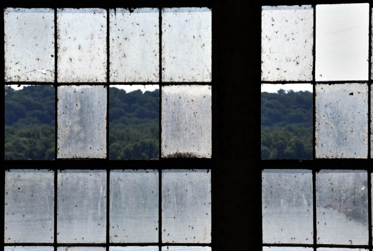 Mayflies and other insects coat some of the 3000 windows on the tailrace side of turbine hall at the Exelon Conowingo Hydroelectric Plant, which has been producing electricity on the Susquehanna River since 1928. (Barbara Haddock Taylor, Baltimore Sun)