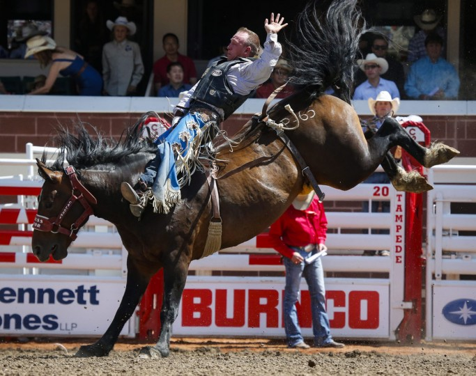 Colin Adams rides Princess Warrior bareback during the Calgary Stampede in Calgary, Alberta, Sunday, July 10, 2016. (Jeff McIntosh/The Canadian Press via AP)