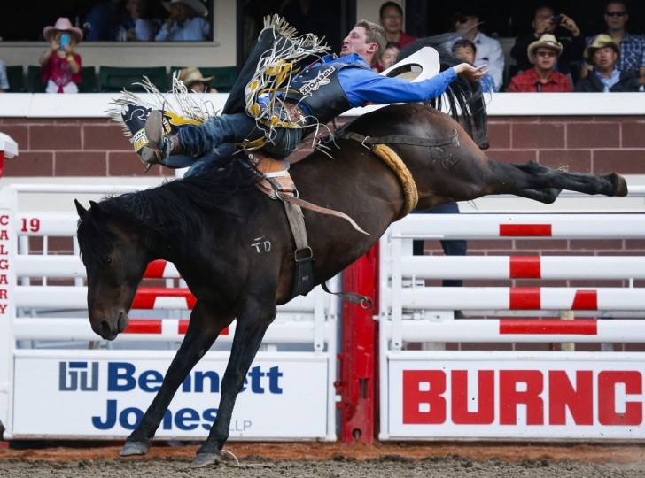 Jake Vold, from Airdrie, Alberta, rides Whiskey Bent during bareback rodeo action at the Calgary Stampede in Calgary, Alta., Sunday, July 10, 2016. (Jeff McIntosh/The Canadian Press via AP)