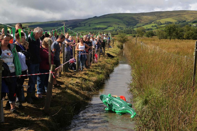 A man dressed as a lifeguard with a crocodile strapped to his back swims the course during the World Bog Snorkelling Championships in Waen Rhydd peat bog at Llanwrtyd Wells, south Wales on August 28, 2016. Entrants must negotiate two lengths of a 60-yard trench through the peat bog in the quickest possible time without using any conventional swimming strokes. (GEOFF CADDICK/AFP/Getty Images)