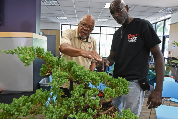 "Arschel Morell, 85, left, discusses with George Small, right, of Baltimore, the look of his bonsai during a monthly meeting of the Baltimore bonsai Club. Morell is one of the original club members from 1972. ""The Baltimore Bonsai Club; founded in 1972; is an active and growing group of bonsai enthusiasts in Central Maryland. Club activities include exhibitions, workshops, collection trips and visiting artists,"" according to its website. (Kenneth K. Lam, Baltimore Sun)"