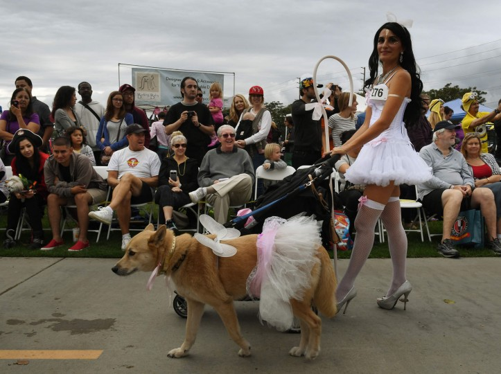 Dogs and their owners dressed in Halloween costumes parade during the annual Haute Dog Howl'oween event in Long Beach, California on October 30, 2016. The parade, which claims to be the largest Halloween dog event in the world, sees hundreds of dogs and their owners dressed in colorful costumes celebrating the festival. (Mark Ralston/AFP/Getty Images)