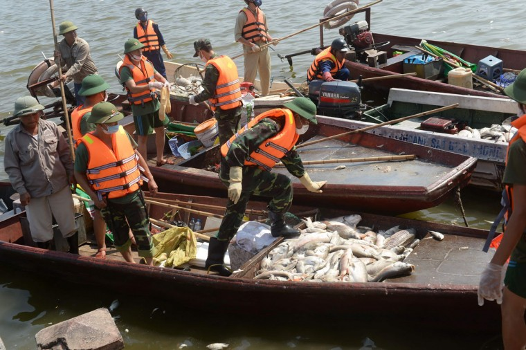 Soldiers unload dead fish from boats at Ho Tay lake (West Lake), Hanoi's largest lake, on October 3, 2016. (HOANG DINH NAM/AFP/Getty Images)