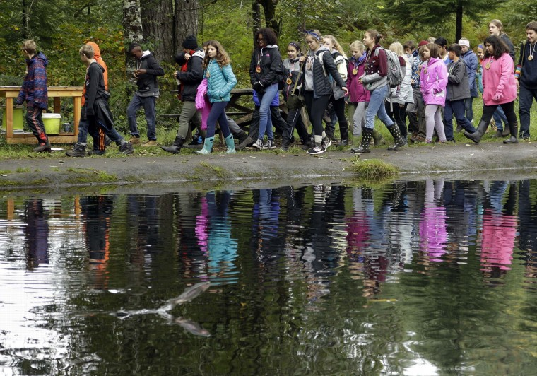 In this Oct. 6, 2016 photo, Outdoor School students walk along a pond with jumping fish during a lesson at Camp Howard in Mount Hood National Forest near Corbett, Ore. The outdoor education is unique to Oregon and is a rite-of-passage for public school students that's meant to instill a respect for nature in each generation - studies show it improves attendance and boosts test scores. (AP Photo/Don Ryan)