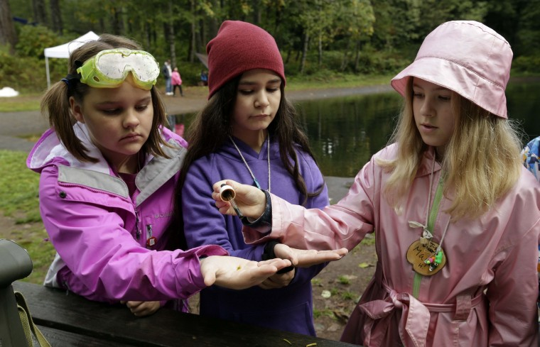 In this Oct. 6, 2016, photo, from left, Outdoor School students Evie Larson, Lillyann Samson and Maya Herring run a test on pond water during a lesson at Camp Howard in Mount Hood National Forest near Corbett, Ore. The outdoor education is unique to Oregon and is a rite-of-passage for public school students that's meant to instill a respect for nature in each generation - studies show it improves attendance and boosts test scores. (AP Photo/Don Ryan)