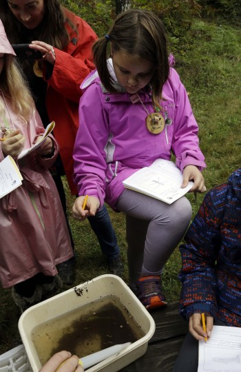 In this Oct. 6, 2016 photo, Outdoor School student Evie Larson studies a pond water sample to enter notes in her field study notebook during a lesson at Camp Howard in Mount Hood National Forest near Corbett, Ore. The outdoor education is unique to Oregon and is a rite-of-passage for public school students that's meant to instill a respect for nature in each generation - studies show it improves attendance and boosts test scores. (AP Photo/Don Ryan)