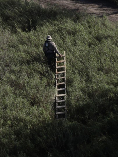 In this Wednesday, Nov. 16, 2016, photo, a U.S. Customs and Border Patrol agent drags a home-made ladder found hidden near a sec ion of border wall near the Rio Grande in Hidalgo, Texas. (AP Photo/Eric Gay)