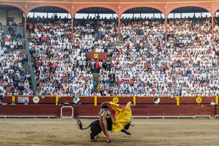 "Peru's bullfighter Andres Roca Rey, performs during the ""Senor de los Milagros"" festival at the Acho bullring in Lima on December 4, 2016. (ERNESTO BENAVIDES/AFP/Getty Images)"