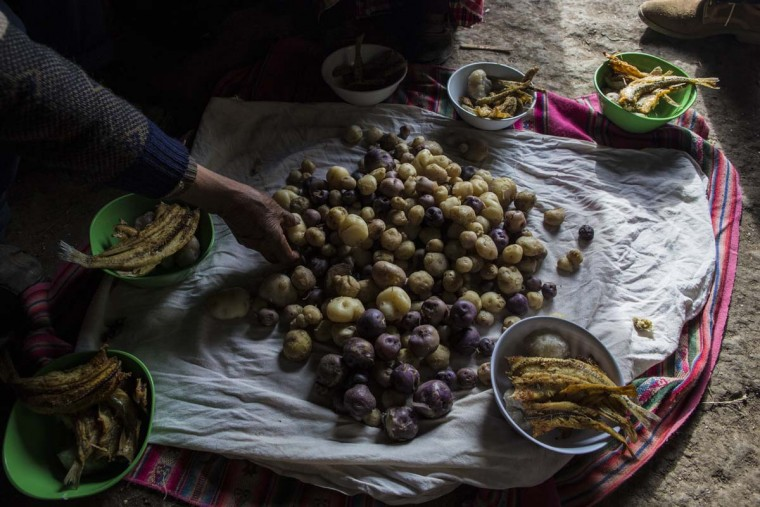 In this Feb.3, 2017 photo, the Avila family sets their lunch of potatoes and fish on the floor of their home in Coata, a small village on the shore of Lake Titicaca, in the Puno region of Peru. Maruja Inquilla, a local environmental activist, has been visiting villagers to alert them of the dangers lurking in their food and water, in connection with contamination in the Lake Titicaca. (AP Photo/Rodrigo Abd)