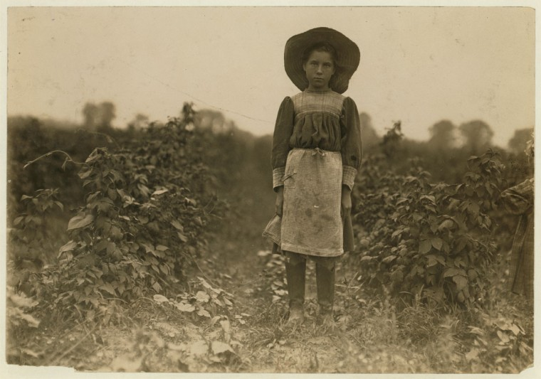 Bertha Marshall a berry picker on Jenkins Farm, Rock Creek, near Baltimore, Md. Been at it 2 summers. Picks about 10 boxes a day. (2 cents a box). Photo July 7, 1909. Location: Baltimore, Maryland. (Lewis Hine/Photo courtesy LOC)