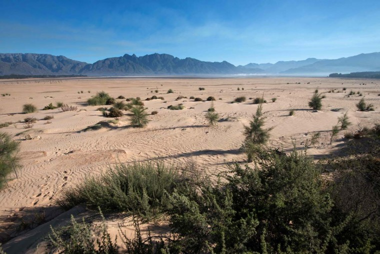 A picture taken on May 10, 2017 shows bare sand and small bushes staring out at the sky at Theewaterskloof Dam, which has less than 20% of it's water capacity, near Villiersdorp, about 108Km from Cape Town. South Africa's Western Cape region which includes Cape Town declared a drought disaster on May 22 as the province battled its worst water shortages for 113 years. This dam is the main water source for the city of Cape Town, and there is only 10% of it's usual capacity left for human consumption, at the last 10% is not usable, due to the silt content. (RODGER BOSCH/AFP/Getty Images)