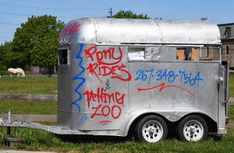 A horse grazes in a field behind a horse trailer at the Fletcher Street Urban Riding Club in North Philadelphia May 16, 2017. The club, a non-profit organization devoted to inner-city horsemanship in north Philadelphia, has used the century-long tradition of black urban cowboys and horsemanship in Philadelphia as a way to keep kids out of trouble by teaching them riding and caring for horses. (TIMOTHY A. CLARY/AFP/Getty Images)