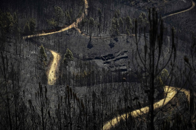 A road meanders among burnt forest areas affected by a wildfire in Vale do Cambra, some 30 km to Pedrograo Grande, on June 20, 2017.The huge forest fire that erupted on June 17, 2017 in central Portugal killed at least 64 people and injured 135 more, with many trapped in their cars by the flames. / (AFP Photo/Miguel Riopa)