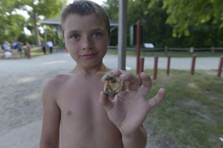 Aiden Freyer, 8, holds a clam that he managed to crack open at North Point. Clams were abundant along the beach on a recent visit to the park, though fish were scarce. (Christina Tkacik/Baltimore Sun)