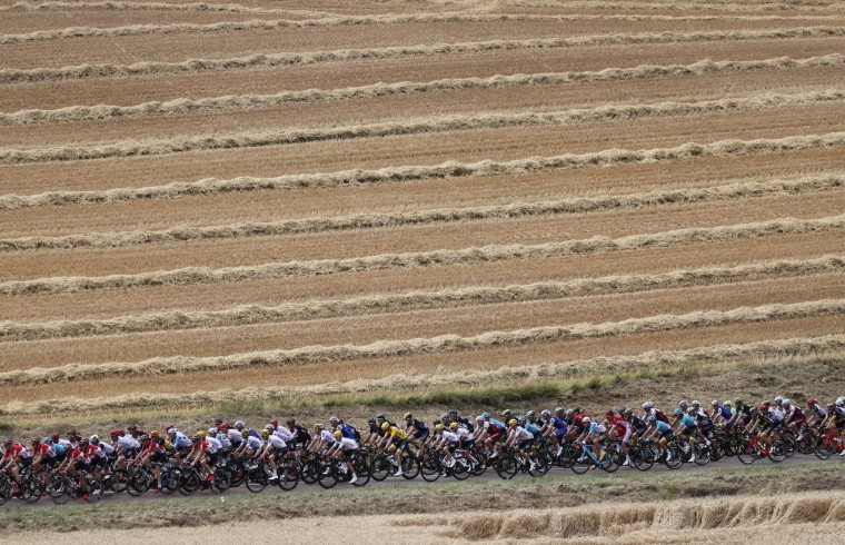 The pack with Britain's Chris Froome, wearing the overall leader's yellow jersey, rides through wheat fields during the seventh stage of the Tour de France cycling race over 213.5 kilometers (132.7 miles) with start in Troyes and finish in Nuits-Saint-Georges, France, Friday, July 7, 2017. (AP Photo/Christophe Ena)