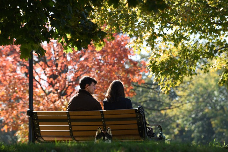 David Friedman, left, and his fiancee Eliza Hens-Greco, right, sit on a bench at Patterson Park with their dog, Radar. (Barbara Haddock Taylor/Baltimore Sun)