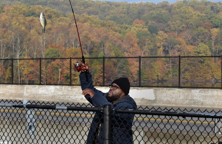Don McCray of Baltimore catches a crappie this morning while fishing at Loch Raven Reservoir. (Barbara Haddock Taylor/Baltimore Sun)