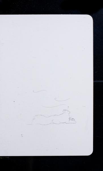 S216125 12