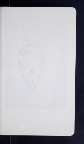 19656 32