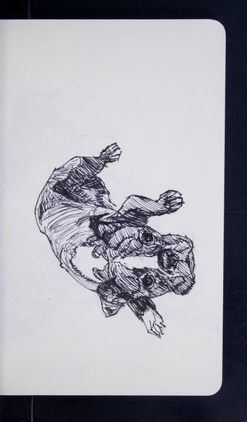 19770 08