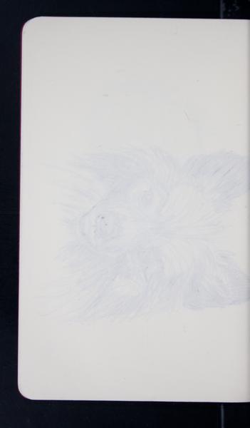 19770 31