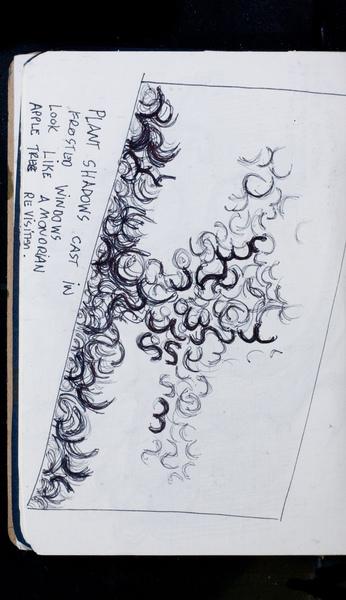 S171385 13