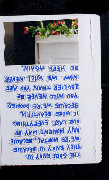 S166462 24