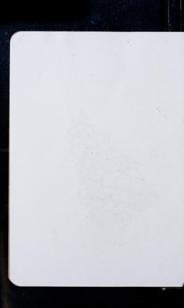 S175264 19