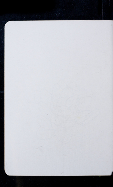 S171100 33