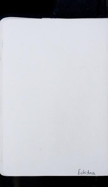 S173186 21
