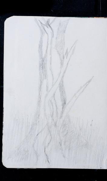 S177783 19