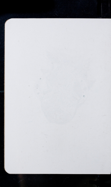 S169970 31