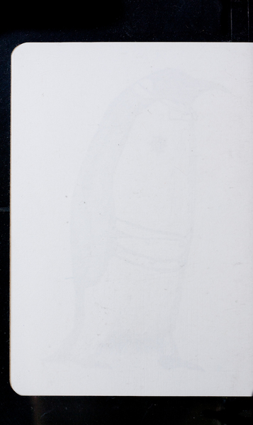 S169970 33