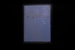 S219903 01