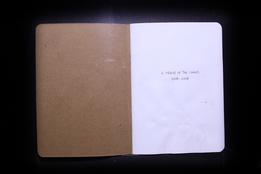 S219560 02