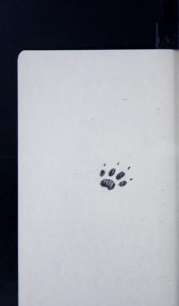 19987 03