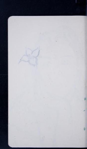 19126 25