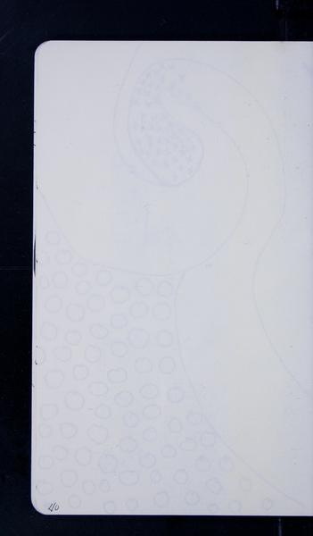 20118 43